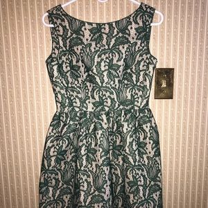 Zara Green Nude Lace Tulip Skater Dress/Small